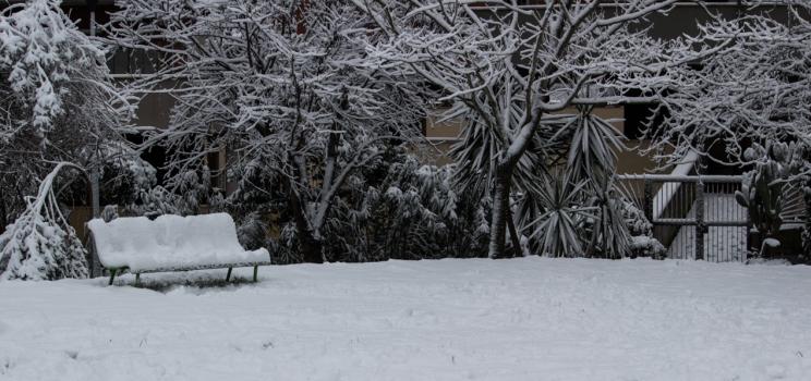 Neve sul parco Pereira