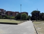 Potatura parco