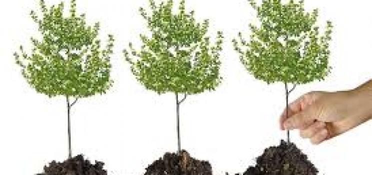 """Iniziativa """"salva pianeta"""""""